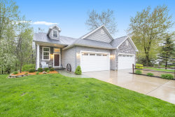 Photo of 8118 Bay Arbor Drive, Augusta, MI 49012 (MLS # 20017299)