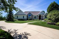Photo of 7707 Harmony Cove Ct Se, Byron Center, MI 49315 (MLS # 20018762)