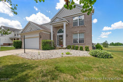 Photo of 6911 Dale Hollow Drive, Caledonia, MI 49316 (MLS # 20021856)