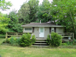 Photo of 64443 Co Rd 384, South Haven, MI 49090 (MLS # 20029423)