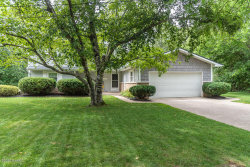 Photo of 3326 Dublin Ave, Kalamazoo, MI 49006 (MLS # 20032135)