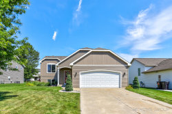 Photo of 3696 Snip Drive, Holland, MI 49424 (MLS # 20033156)