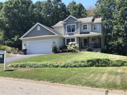 Photo of 4092 Amazon Drive, Lowell, MI 49331 (MLS # 20034126)
