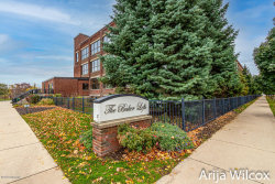 Photo of 533 Columbia Avenue, Unit 213, Holland, MI 49423 (MLS # 20044673)