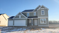Photo of 6728 Arlene, Hudsonville, MI 49426 (MLS # 20047564)