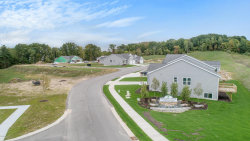 Photo of #12 Tributary, Unit 12, Rockford, MI 49341 (MLS # 20047625)