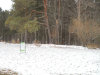 Photo of Lot 52 Crescent, Greenville, MI 48838 (MLS # 14062883)