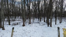 Photo of 5754 Canal, Wyoming, MI 49418 (MLS # 17009517)