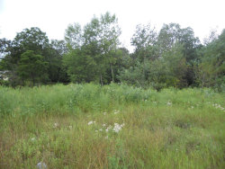 Photo of Lot 32 Ronalds Road, Dorr, MI 49323 (MLS # 17041805)