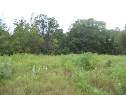 Photo of Lot 33 Ronalds Road, Dorr, MI 49323 (MLS # 17041920)