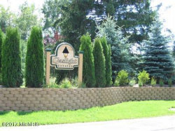 Photo of 6430 Gaslight Circle, Unit Lot 14, Saugatuck, MI 49453 (MLS # 17044884)