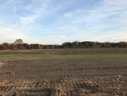 Photo of Lot 56 Stonebridge Drive, Grandville, MI 49418 (MLS # 17045238)