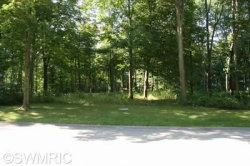 Photo of 162 W West Shore Woods, Unit 16, Douglas, MI 49406 (MLS # 17048442)