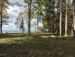 Photo of 2572 Lakeshore Drive, Fennville, MI 49408 (MLS # 17049665)
