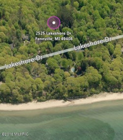 Photo of 2525 Lakeshore Drive, Fennville, MI 49408 (MLS # 17052694)