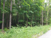 Photo of Lot 17-20 Pepper Brooke Lane, Saugatuck, MI 49453 (MLS # 18030628)