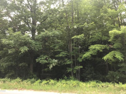 Photo of Lot 2 168th Avenue, Spring Lake, MI 49456 (MLS # 18033302)