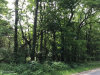 Photo of V/L S Payne Lake Road, Wayland, MI 49348 (MLS # 18048975)