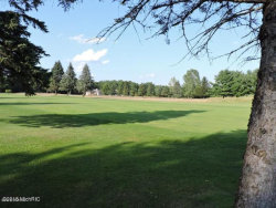 Photo of 7842 Red Fox Road, Canadian Lakes, MI 49346 (MLS # 18051256)