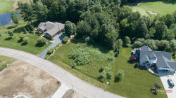 Photo of 3497 Palmer Drive Drive, Saugatuck, MI 49453 (MLS # 19031132)
