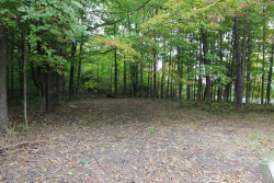 Photo of 0 Lakeview Ave, South Haven, MI 49090 (MLS # 19057369)
