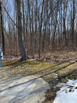 Photo of 13241 Deer Creek Drive, Unit 15, South Haven, MI 49090 (MLS # 20007612)