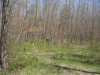 Photo of 000 Lot A M 40, Hamilton, MI 49419 (MLS # 20016582)