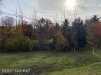 Photo of 001 Cr 380, South Haven, MI 49090 (MLS # 20044842)