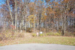 Photo of 3030 Wood Duck Lane, Ada, MI 49301 (MLS # 20046251)
