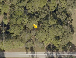 Photo of Lot 19 Hackley Road, NORTH PORT, FL 34291 (MLS # A4410602)
