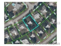 Photo of 12516 Curry Drive, SPRING HILL, FL 34609 (MLS # A4418927)