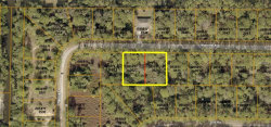 Photo of MONCRIEF AVE, NORTH PORT, FL 34286 (MLS # A4420911)