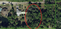 Photo of 101 Girard Drive, HUDSON, FL 34667 (MLS # A4468953)