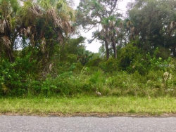 Photo of RAYFIELD DR, NORTH PORT, FL 34291 (MLS # C7406659)