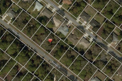 Photo of 326 Bamboo Drive, PORT CHARLOTTE, FL 33954 (MLS # C7406686)