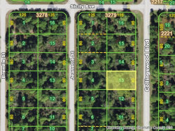 Photo of 4187 Collingswood Boulevard, PORT CHARLOTTE, FL 33948 (MLS # C7409054)