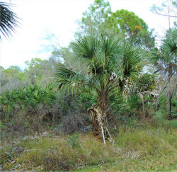 Tiny photo for 15484 Oasis Avenue, PORT CHARLOTTE, FL 33953 (MLS # C7409775)