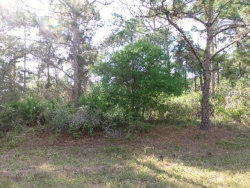 Photo of ALPACA ST, NORTH PORT, FL 34291 (MLS # C7411660)