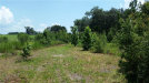 Photo of 0 Trilby Road, DADE CITY, FL 33523 (MLS # E2400568)