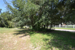 Photo of 12751 Judy, DADE CITY, FL 33525 (MLS # E2400687)