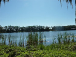 Photo of WISTERIA LOOP RD, LAND O LAKES, FL 34639 (MLS # H2400028)