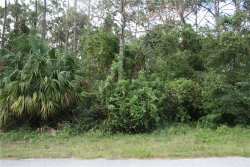 Photo of 1182 Maverick Street Nw, PALM BAY, FL 32907 (MLS # O5544416)