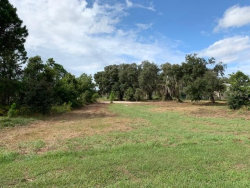 Photo of 438 Long And Winding Road, GROVELAND, FL 34737 (MLS # O5716011)