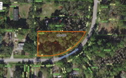 Photo of 1669 Country Woods Drive, LAKELAND, FL 33809 (MLS # O5877213)