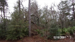 Photo of SW 172ND LOOP, OCALA, FL 34473 (MLS # OM600192)