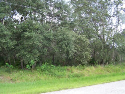 Photo of 401 Lakeview Road, POINCIANA, FL 34759 (MLS # S5005711)