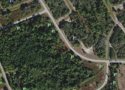 Photo of 1552 Mediterranean Drive, POINCIANA, FL 34759 (MLS # S5024952)