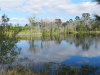 Photo of 4730 Cobb Road, LAND O LAKES, FL 34638 (MLS # T3151026)