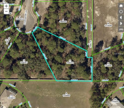 Photo of STORYBOOK LN, SPRING HILL, FL 34609 (MLS # T3152032)