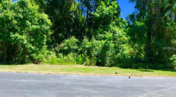 Photo of KALEBS FOREST TRAIL, DOVER, FL 33527 (MLS # T3171323)